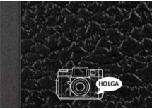The Holga manual.