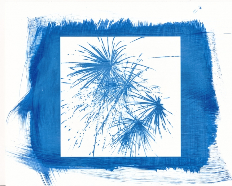 Create Glossy Cyanotypes with Adox Art Baryta Sample image by Francesca Di Leo