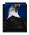 Printfile BLK810-2S Archival Print Preservers Holds 2- 8x10 prints Black Background - 25 pack