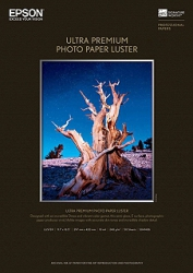 Epson Ultra Premium Photo Luster Inkjet Paper - 240gsm 8.5x11/250 Sheets