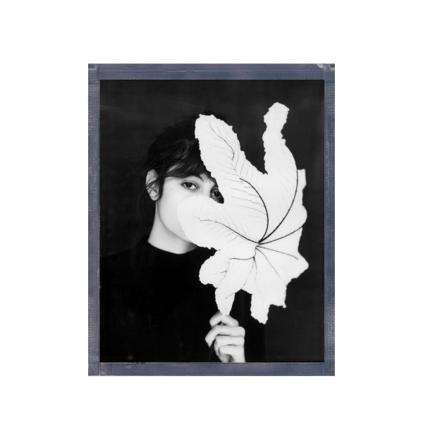 Polaroid Originals B&W Film for 8x10 - 10