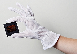 Dotline Anti Static Gloves - Large