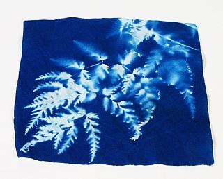 Cyanotype Store Fabric Squares 6 In X 6 In 25 Pack Freestyle